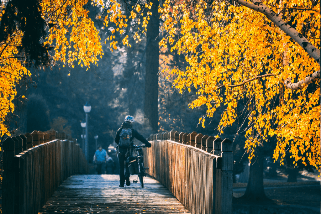 Cyclist amid fall colors in Bend, Oregon
