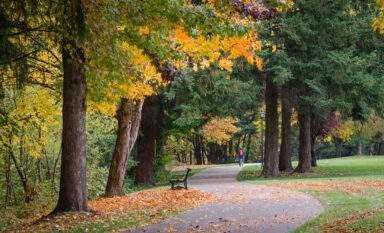 Eugene fall colors along Willamette River