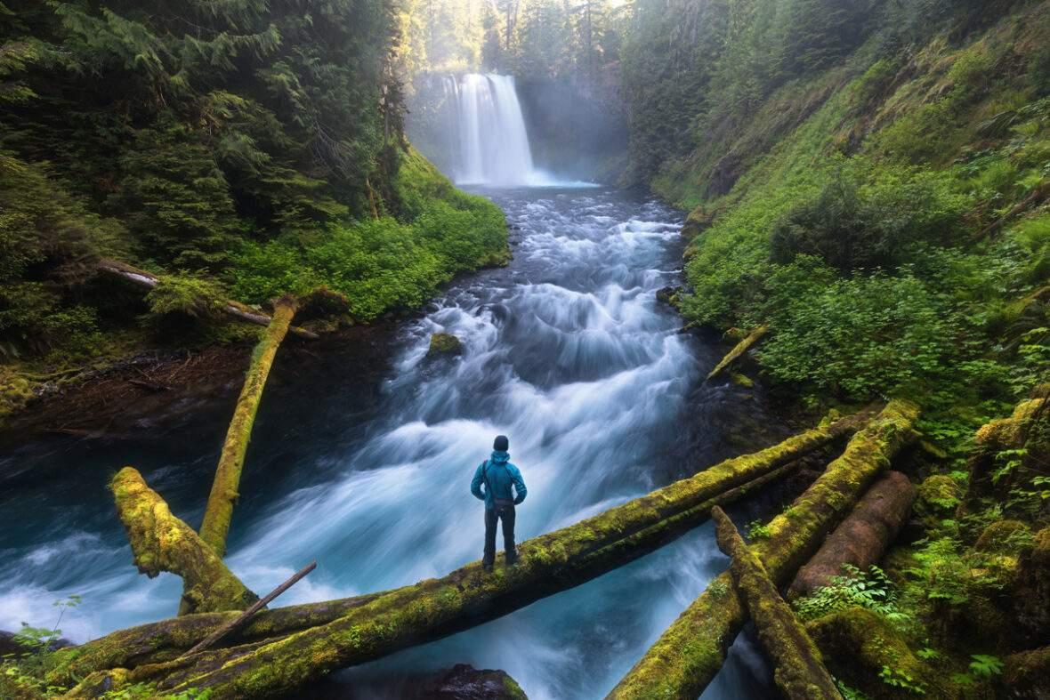 Hiker viewing Koosah Falls on McKenzie River, Oregon